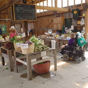 Farm Profile: Brookfield Farm