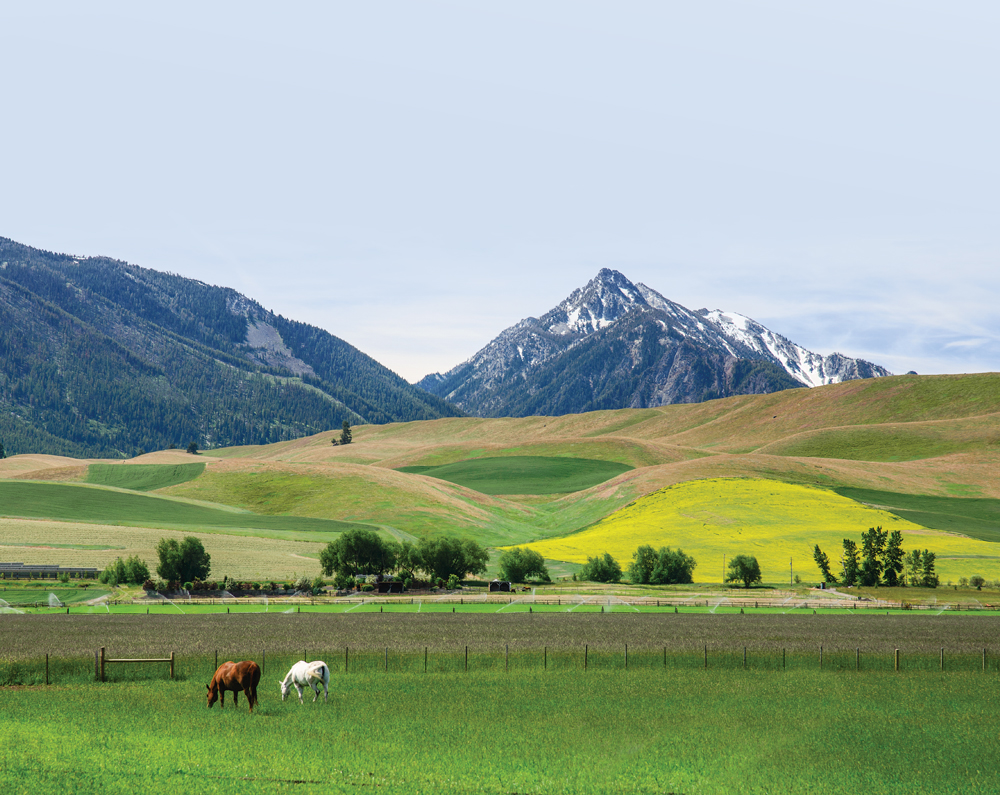 Aging farmers will turn over two-thirds of Oregon's ag land